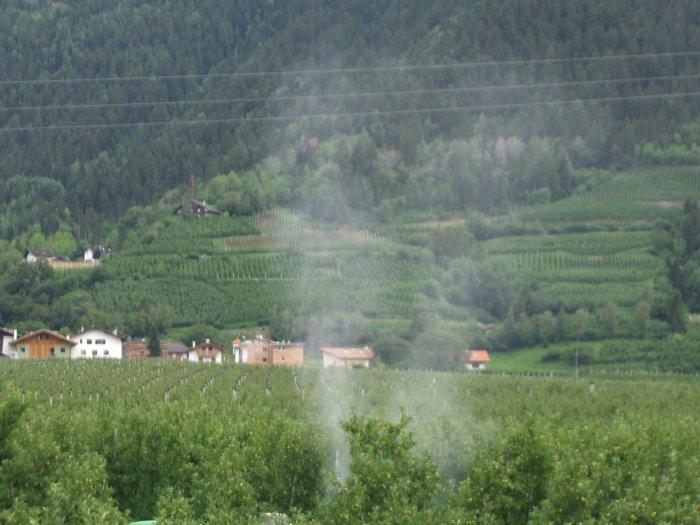 Giftige Chemiewolken prägen nur allzuoft den Anblick der Apfelplantagen Südtirols