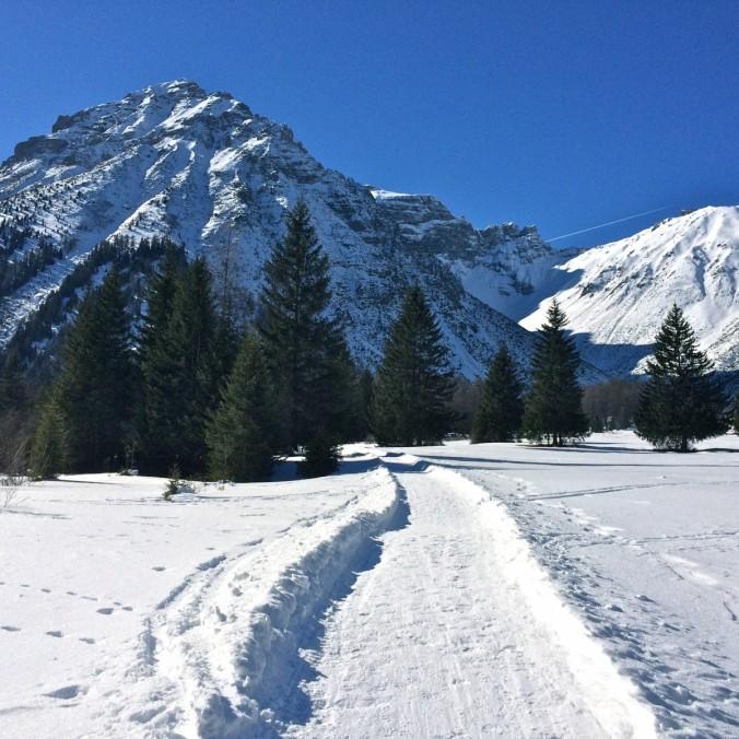 Hand auf's Herz: wo gibt es das sonst noch? Ein absolut fantastischer Winterwanderweg führt durch eine Bilderbuchlandschaft. Ruhe und Erholung pur.