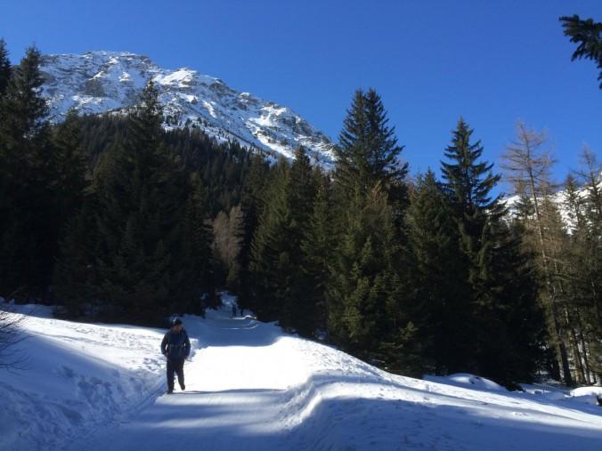Der Winterwanderweg zum Obernberger See ist auch gleichzeitig eine traumhafte Rodelstrecke.