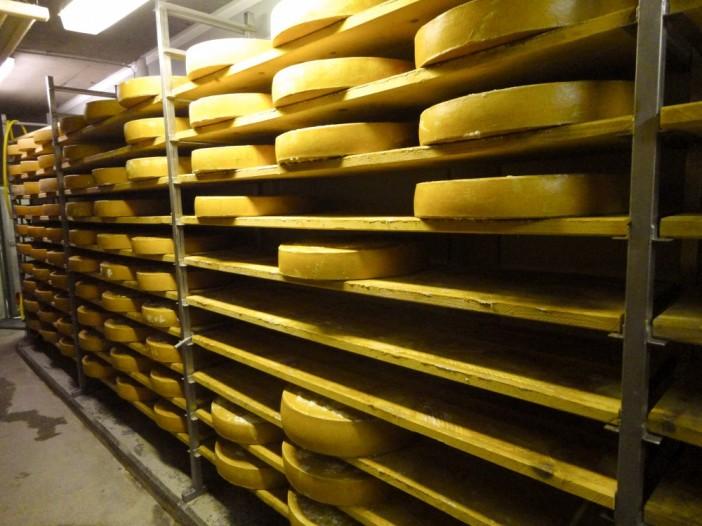 Richtiger Käse muss gelagert werden. Hier: Das Lager des ganz vorzüglichen Käses von der Kasalm in Niederau, in der Wildschönau.
