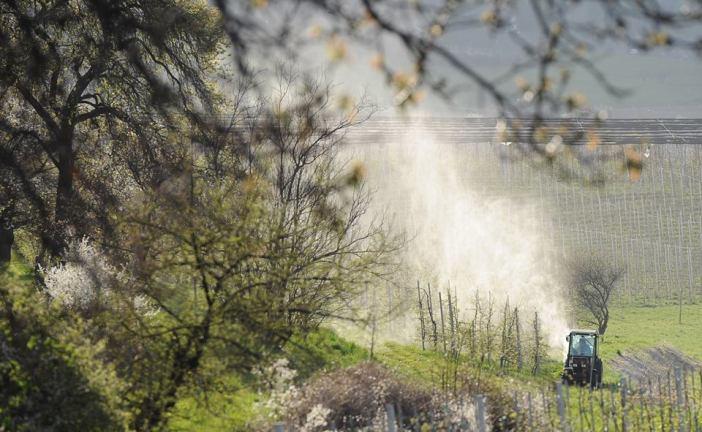 Derzeit geht in Südtirol wieder 'der Rauch' auf. Allerdings als Cocktail meist höchst gesundheitsgefährlicher Pestizide.
