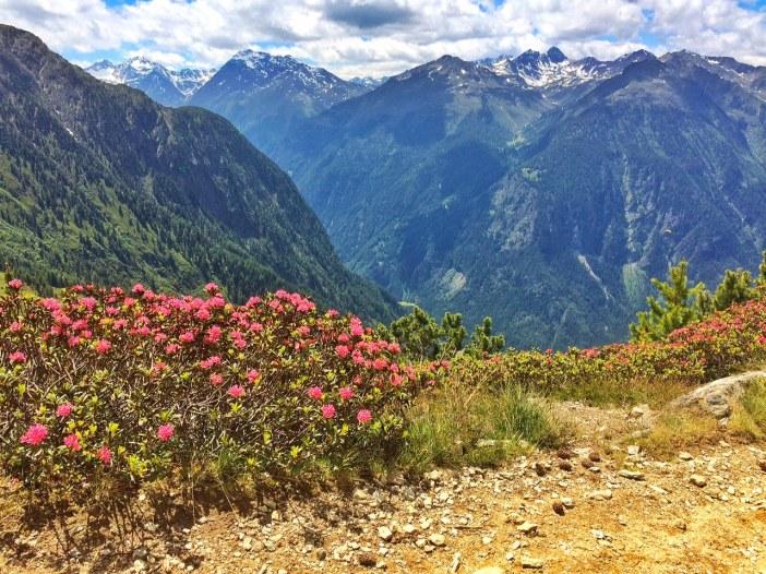 Der Blick in die Ötztaler Alpen. Ganz links: der fundusfeiler