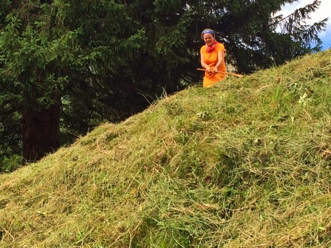 Helgas Heu auf der Bergmahd