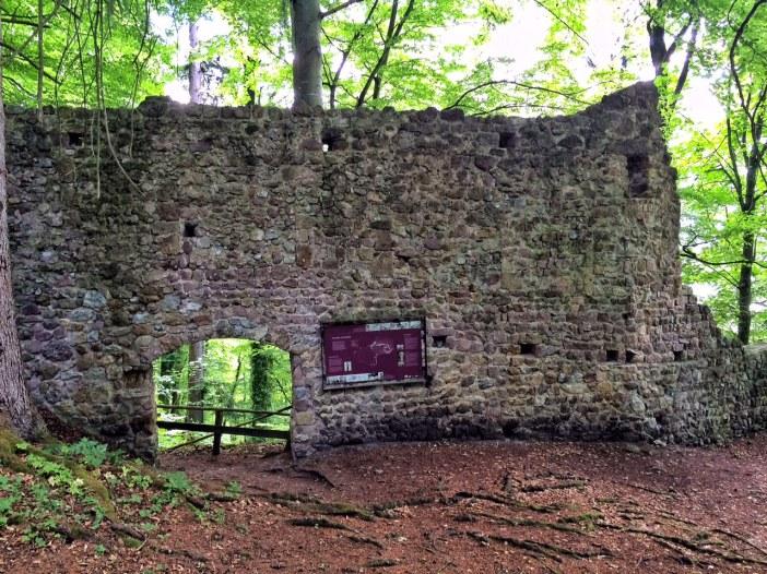 Der letzte Rest der Zwingburg: Eingang und Mauer sind noch vorhanden. Der Rest ist - gottseidank - nahezu dem Erdboden gleich gemacht worden. Burgen waren immer Unterdrückungszentralen der Landbevölkerung.