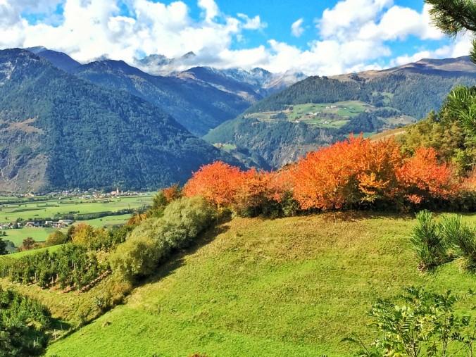 Blick vom Ganglberg zu jener Stelle, an der mehr als 400 Jahre in vorchristlicher Zeit Opfer dargebracht worden sind.
