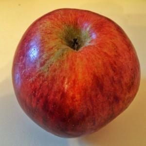 Der einzige, 'echte' Tiroler Apfel.