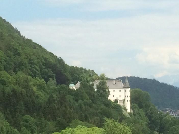 Offenbar im letzten Augenblick wurde Falchs Gulderling auf dem Gut des Schlosses Tratzberg vom Pomologen Falch gefunden und der Nachwelt erhalten.