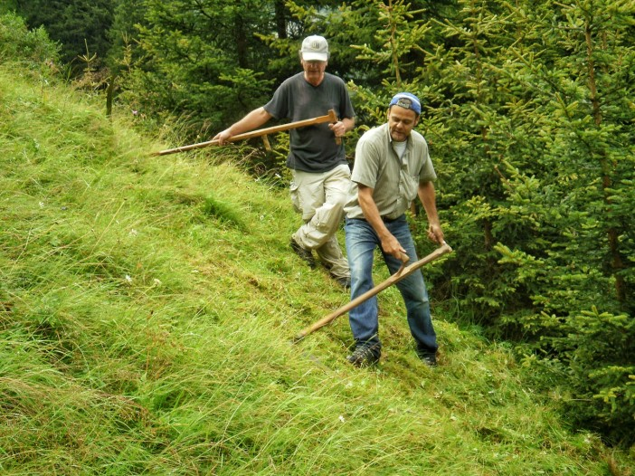 Sensenmähen. Eine der wichtigen handwerklichen Tätigkeiten auf unseren Bergmähdern.