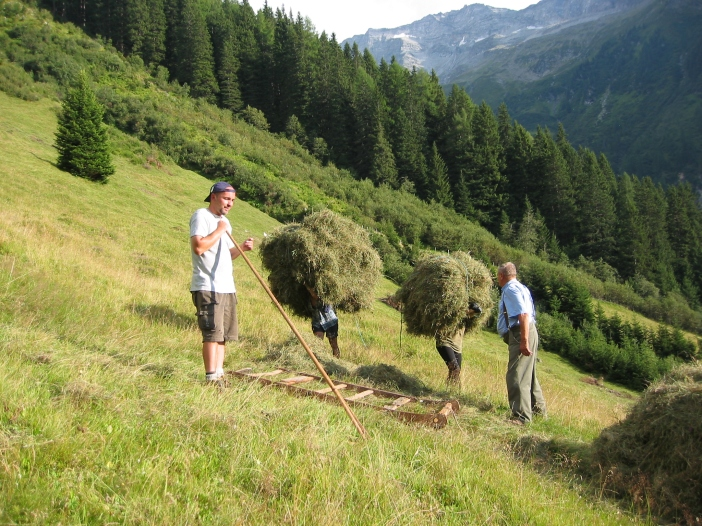 Wenn die Bergmähder nicht mehr gemäht werden verschwinden hunderte von Gewürzpflanzen für immer.