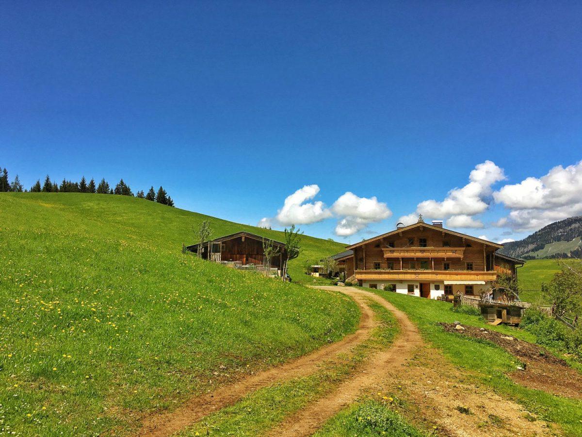 Der Bauernhof Der Träume