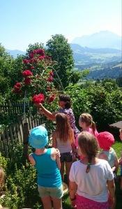 Birgit bei der Kräuterführung mit Kindern.