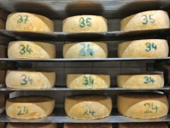 Der Käse-Reifekeller von Karl Peer auf der Peer-Alm im Navistal. Hier reift der ausgezeichnete Vollfett-Käse.