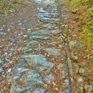 Jahrhundertelang passierten die römischen Karren die Via Claudia am Fernpass und verewigten sich in Form ihrer Wagenspuren.