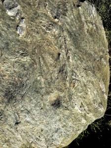 Auf dem Viggarhochleger finden sich zahlreiche Schalensteine.