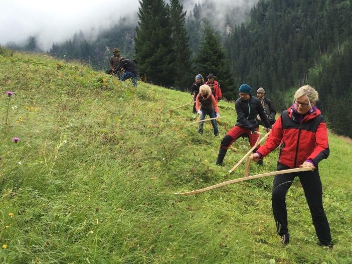 Die Schule der Alm bildet künftige Freiwillige aus die mithelfen, Almen und Bergmähder in unserer Heimat zu erhalten.