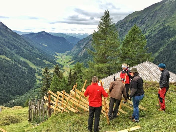 Hoch über dem Valsertal, auf dem Bergmahd Öfen, errichteten Schüler_innen der Schule der Alm einen ersten 'Übungs-Schrägezaun'.