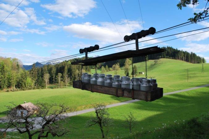 Milchtransport in die BIO-Sennerei Hatzenstädt