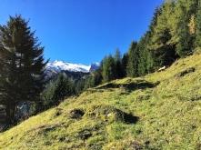 Der Aufstieg zum Tuxer Joch über die Bergmähder der Hintertuxer Bauern.