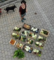 Gemüsekistln vom Sockerhof. Bild: Sockerhof
