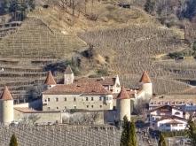 Schloss Goldrain ist von Apfelmonokulturen eingekreist
