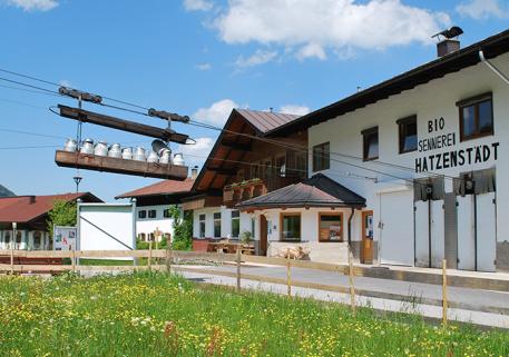Die Milchlieferung zur Sennerei Bild: Sennerei Hatzenstädt