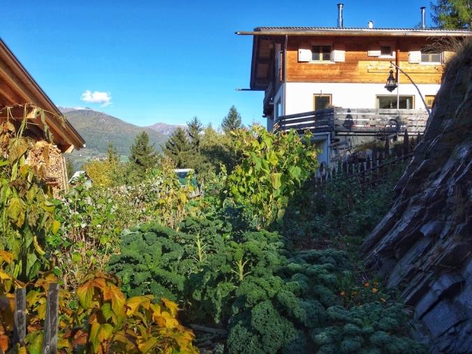 BIO-Bergbauernhof Psegghof, Hof mit Permakulturgarten