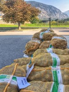 BIO Kartoffeln vom Biohof Glatzl