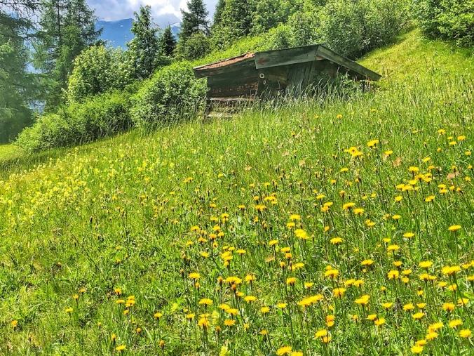 Heupille auf Bergmahd in Obernberg